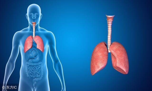 癌症晚期还能活多久_肺癌能活多久?看专家分析肺癌